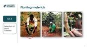 4.1 Planting And Rotation